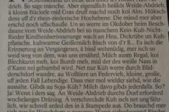 Hobbybauern-Plittersdorf-Presse-2012-2